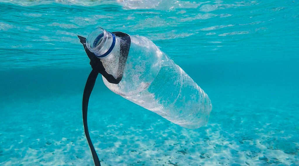 Plastic water bottle floating in the sea